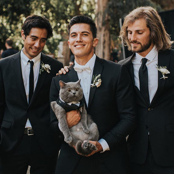 This Groom Loves His Cat So Much, He Made the Feline His Best Man