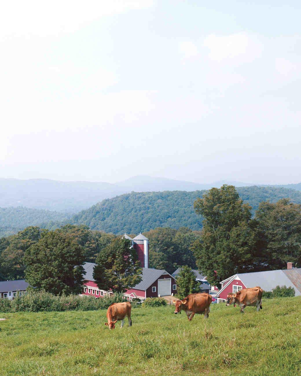 farm-mwd107926.jpg