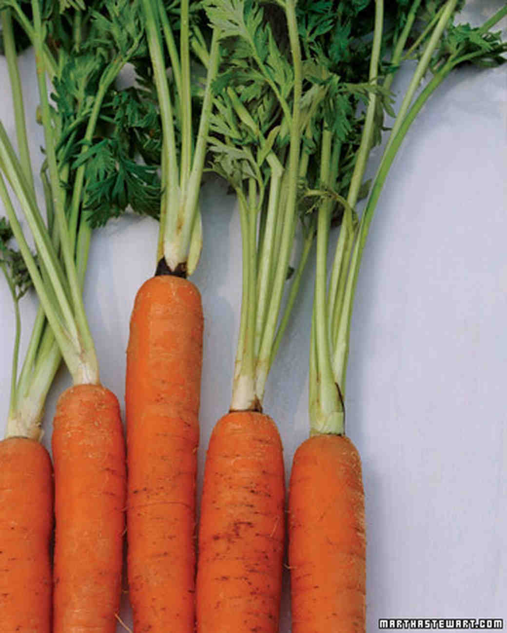 mb_0308_carrots1.jpg