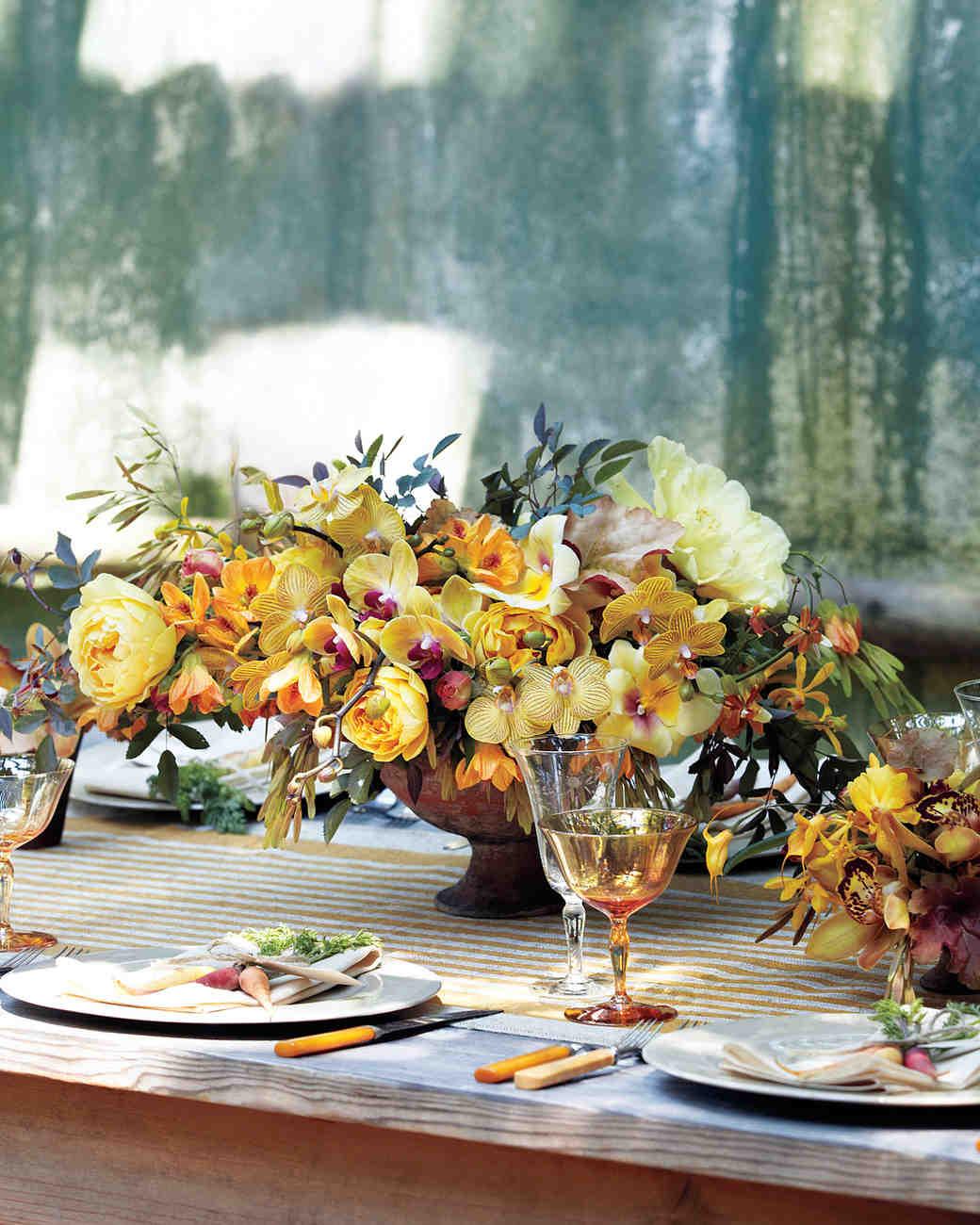orchids-4-mwd107620.jpg