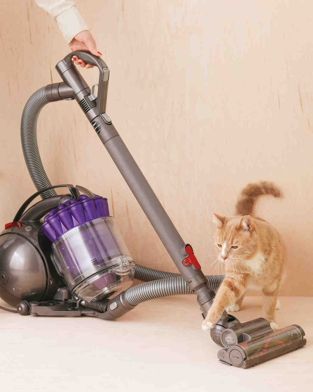 vacuum-104-mwd109796.jpg