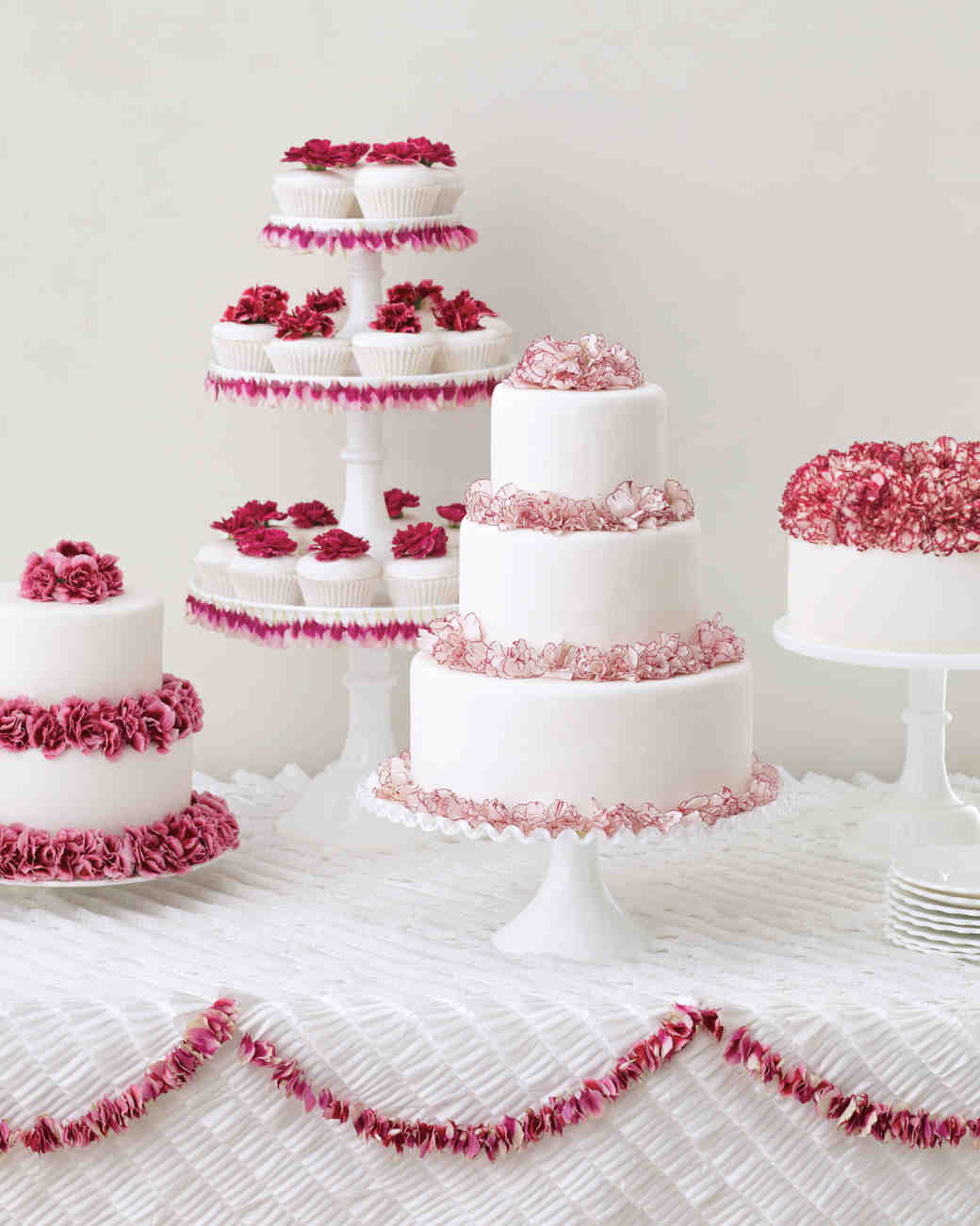 carnations-4-mwd108375.jpg