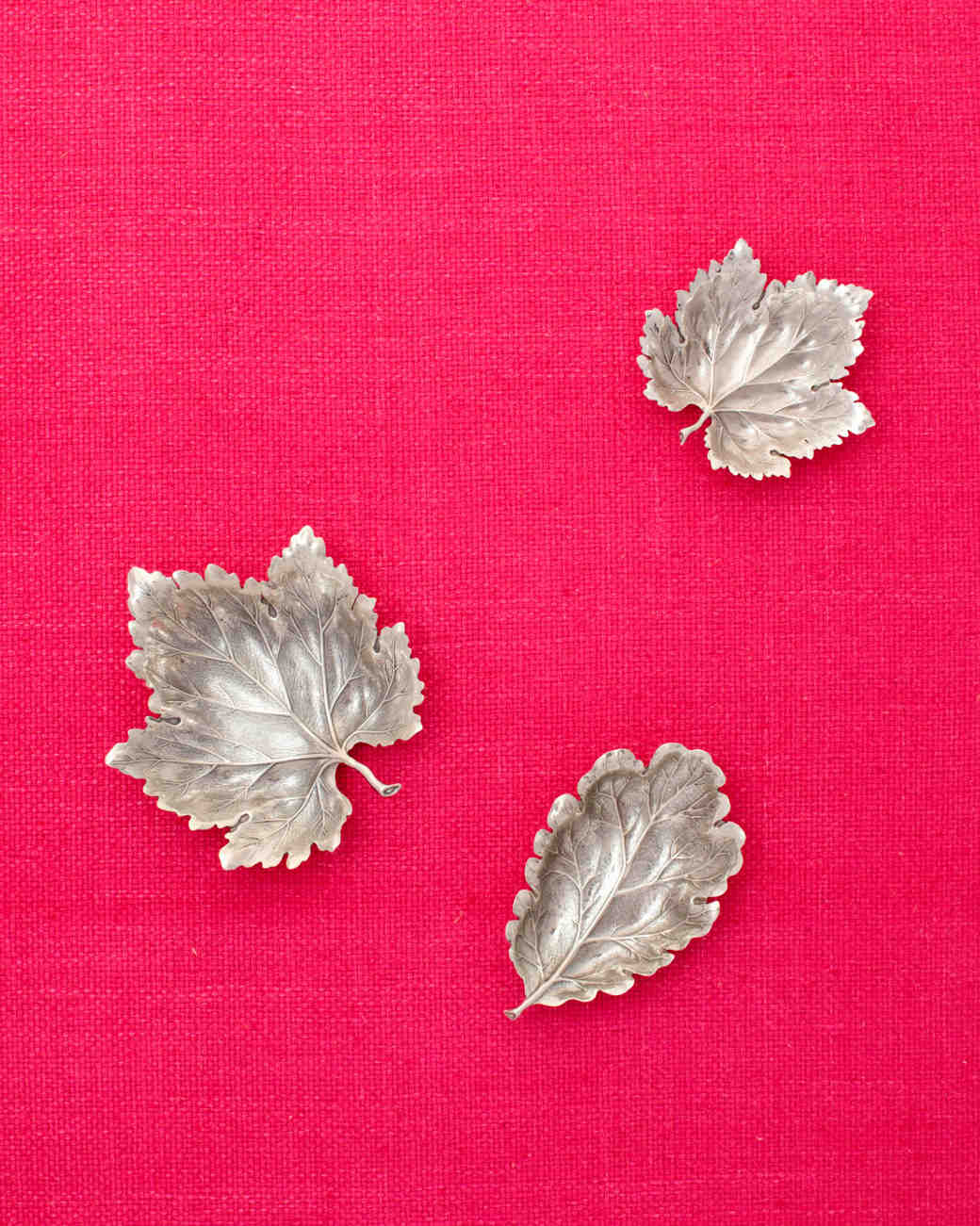 silver-leaves-wd107851.jpg
