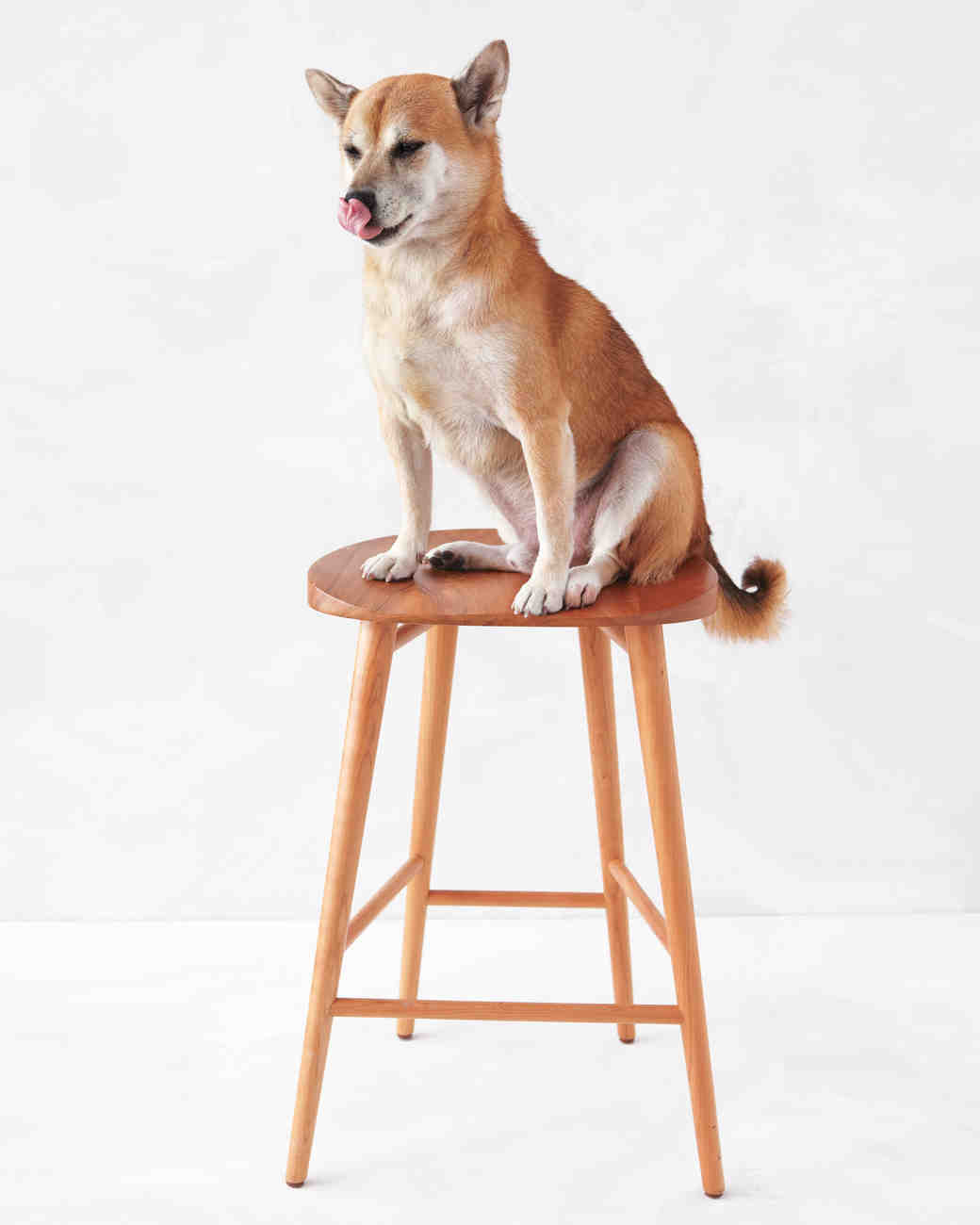 room-board-stool-mwd108187.jpg