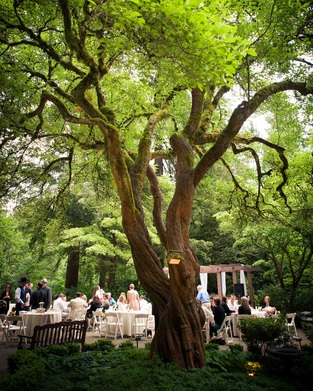 18 beautiful botanical garden wedding venues martha for Beautiful gardens to get married in