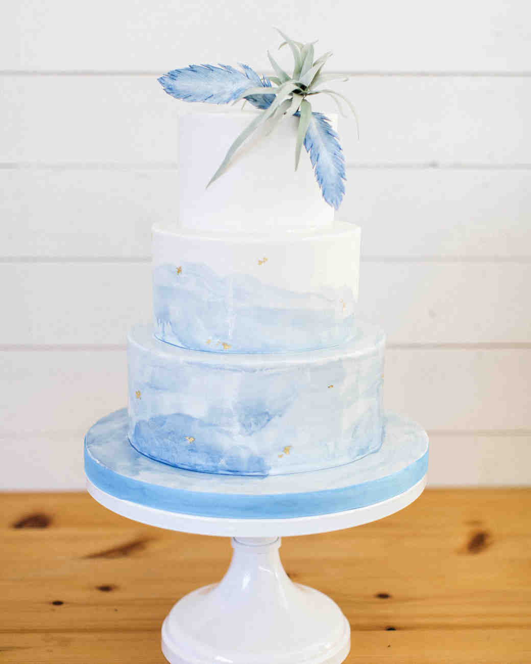 ombre cakes flora fauna