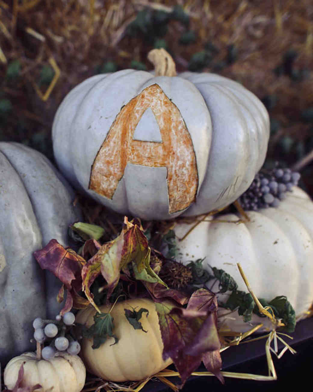 Initialed Pumpkin