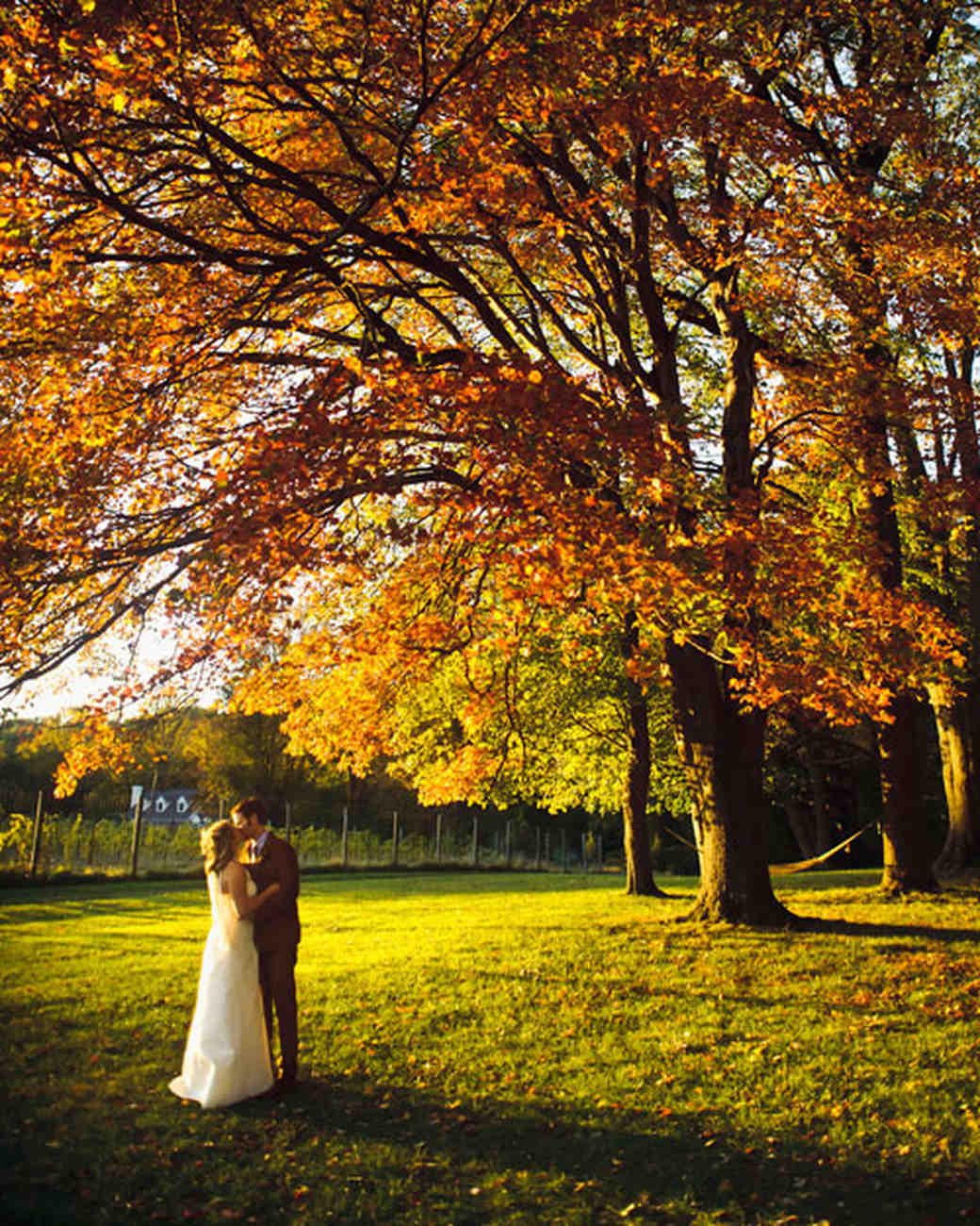 Couple Posing Beneath Autumn Tree