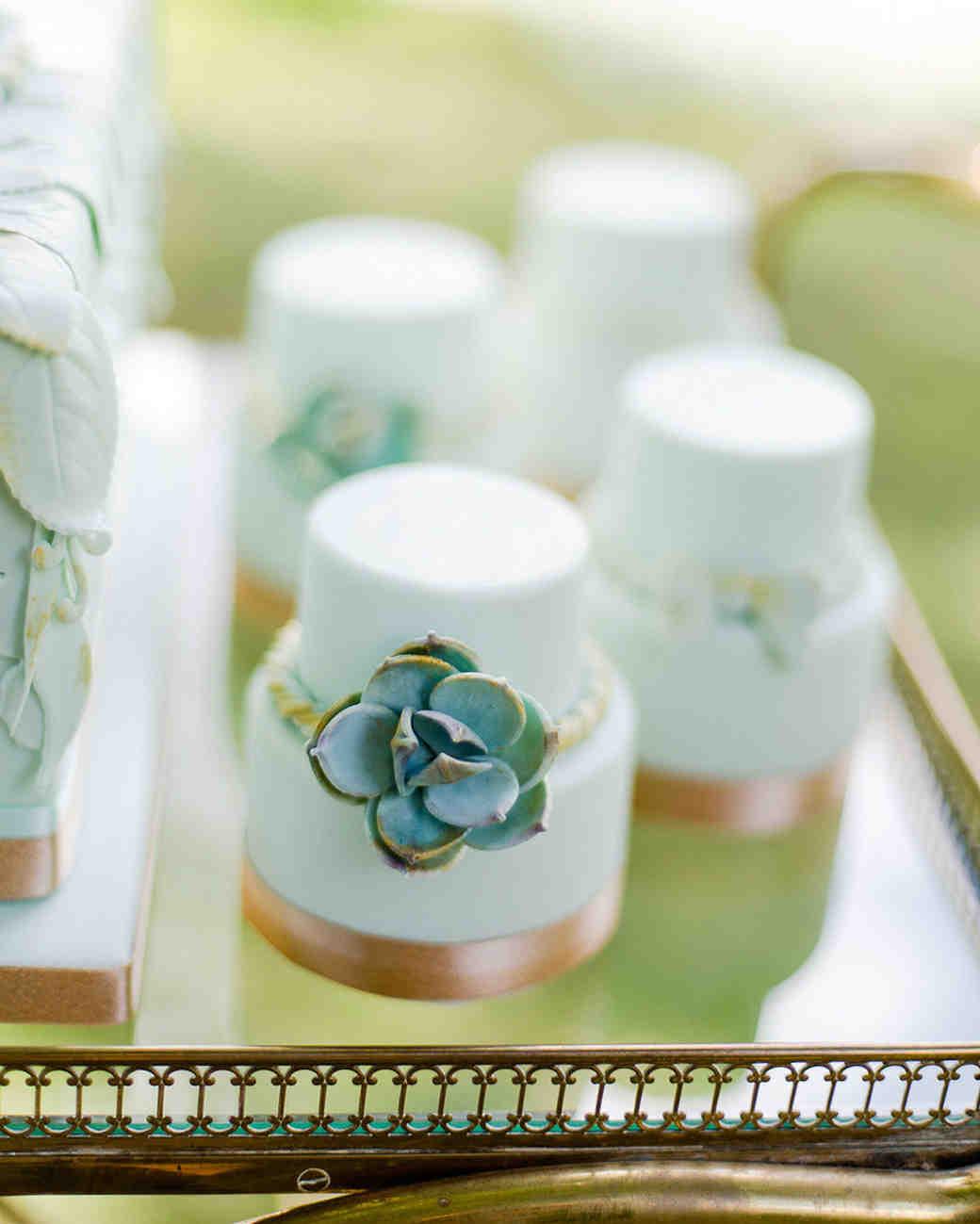 succulent mini cakes