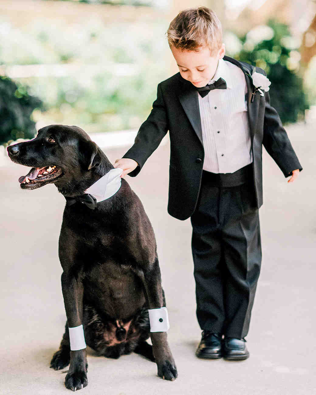 Dapper Ring Bearers Who Completely Stole Our Hearts Martha Stewart