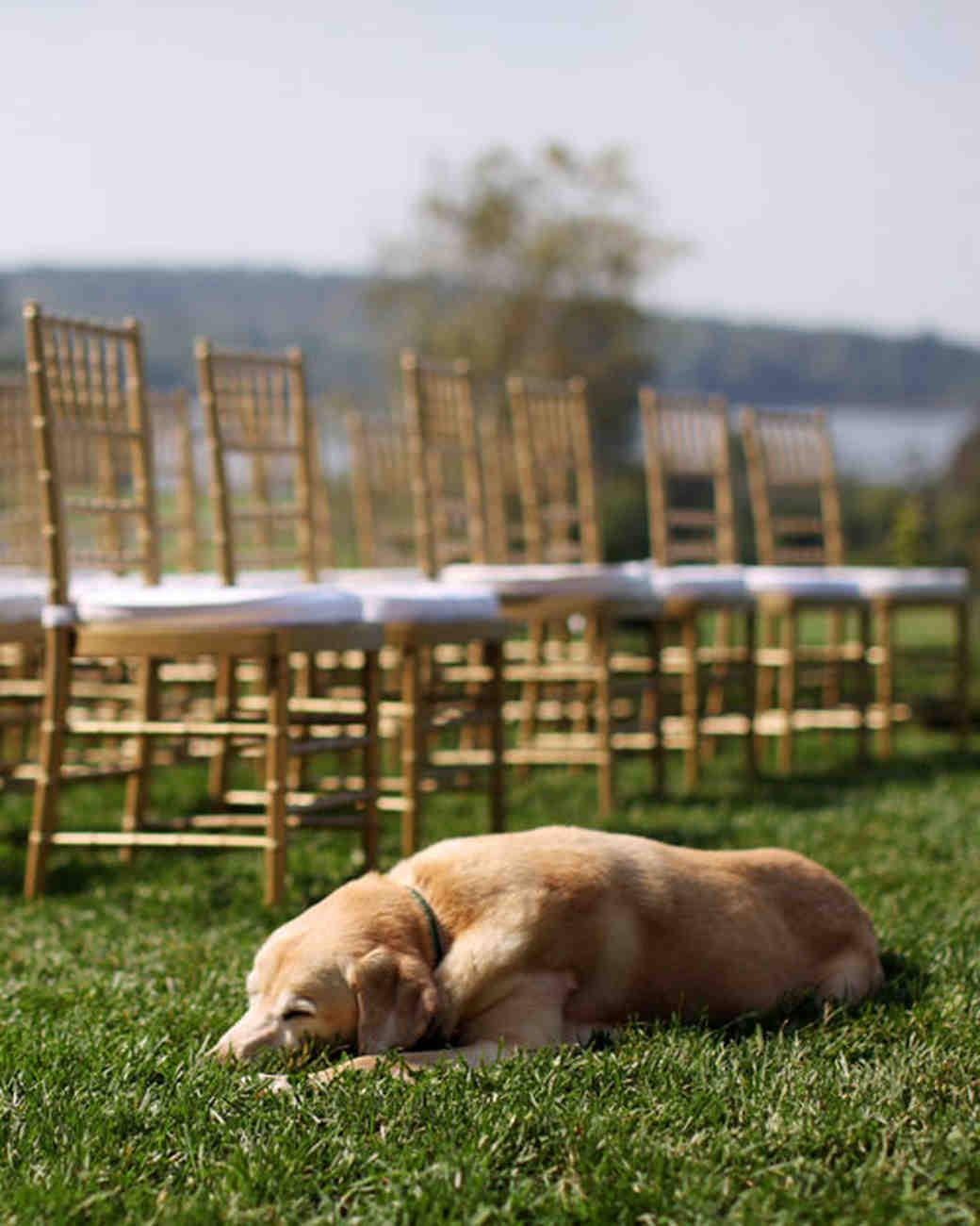 leslie-randy-realwedding-0311-125.jpg