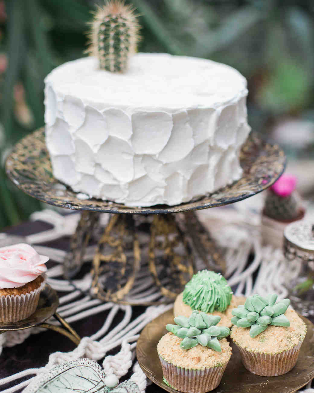 Cake and Cupcakes with Frosting Cacti