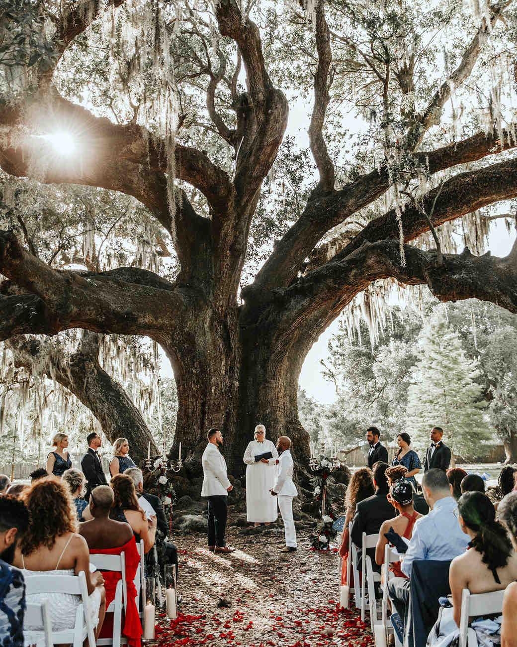 joe tim new orleans wedding ceremony by tree