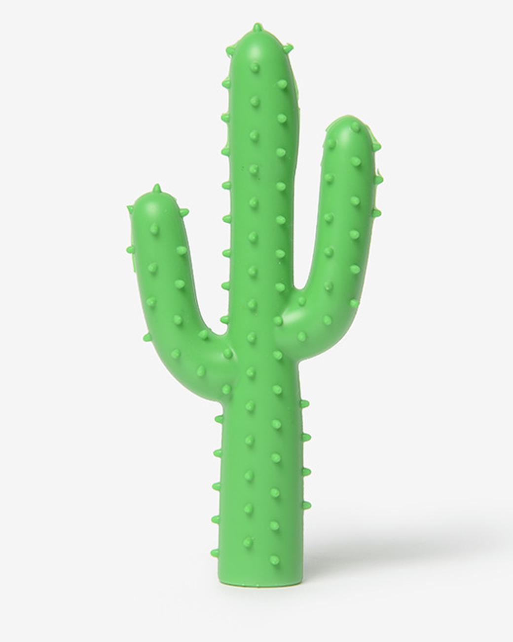 cactus dog chew