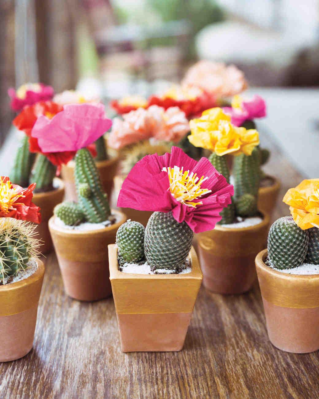 kate-michael-cacti-04-06n-mwd110537.jpg