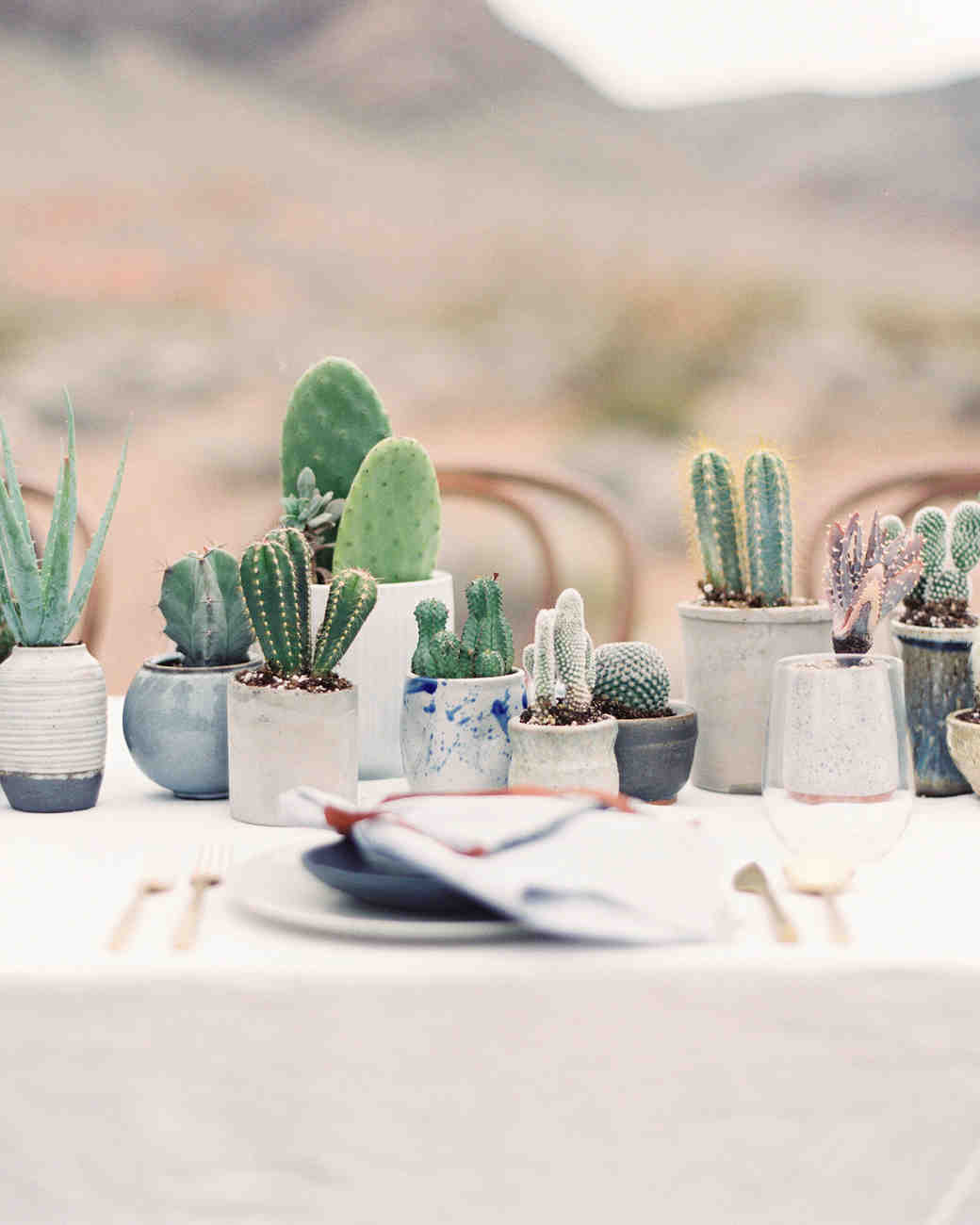 Reception Tables with Potted Cacti