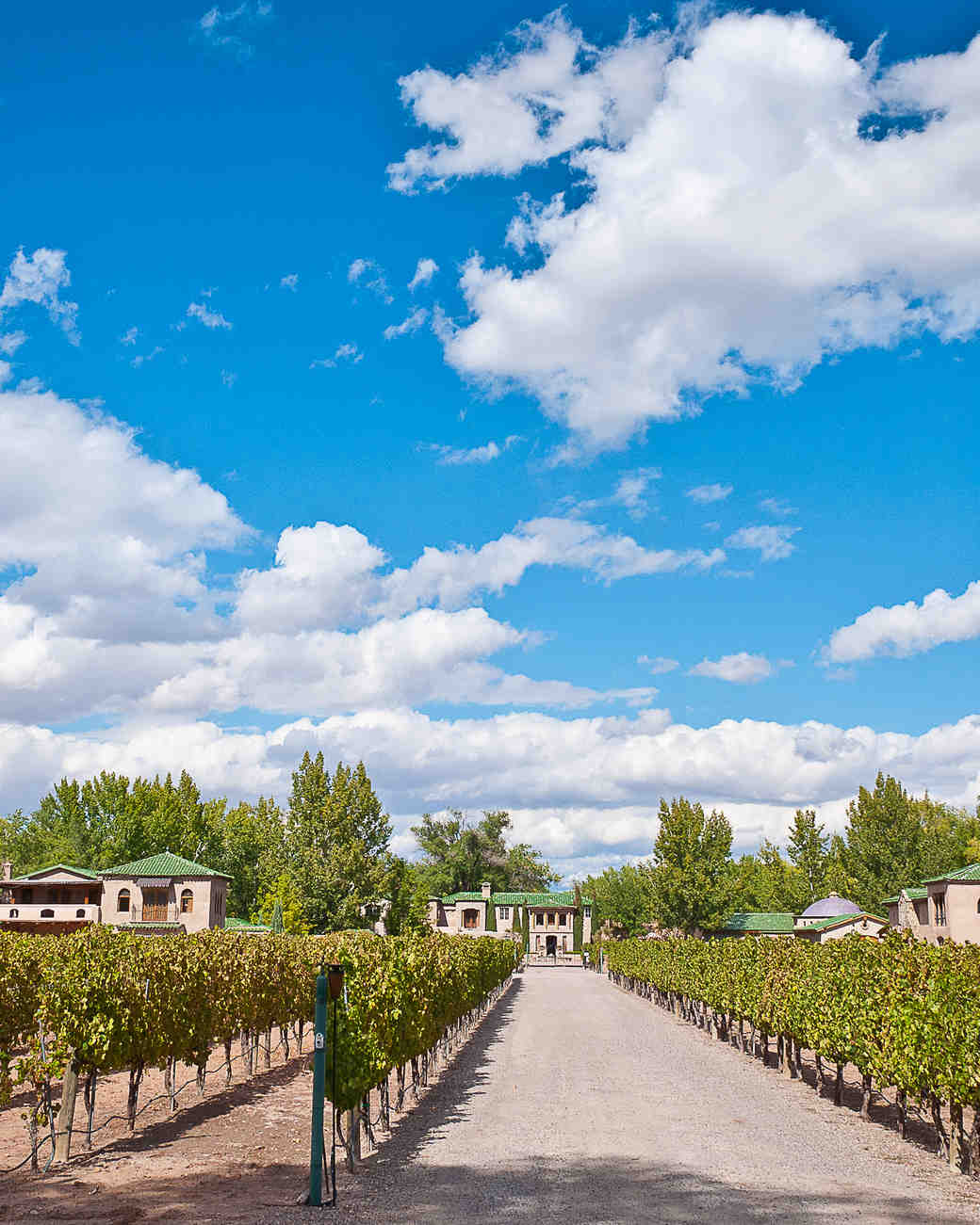 bachelorette-hotel-albuquerque-winery.jpg