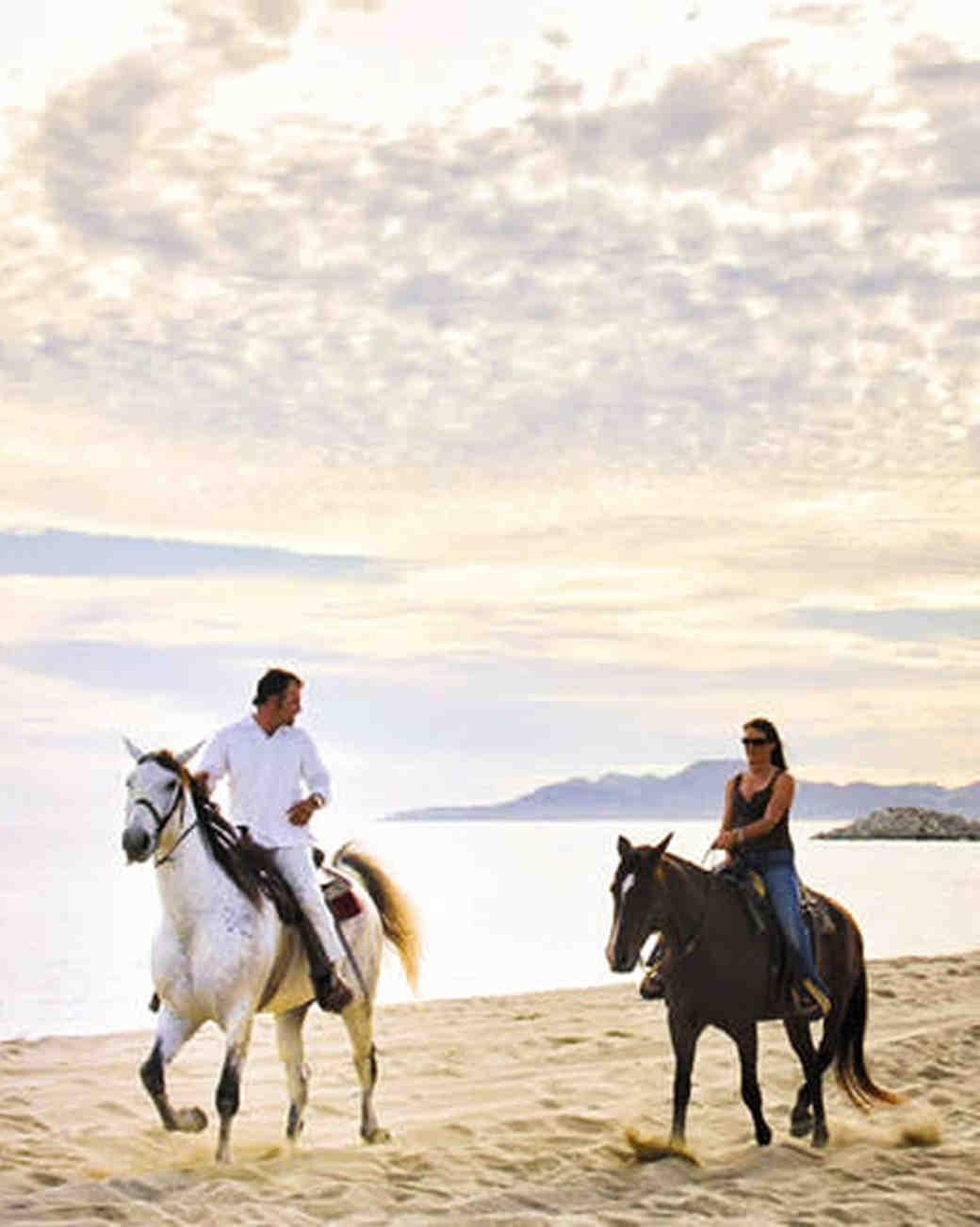 horses running along beach