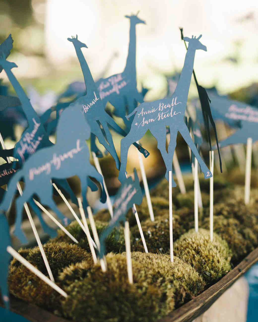 giraffe escort cards