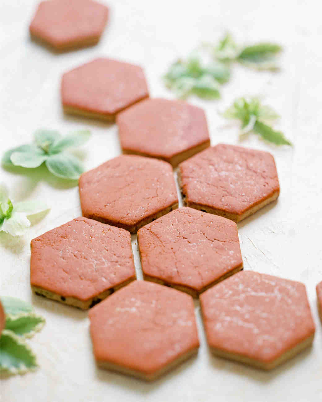 terracotta colored hexagonal cookies