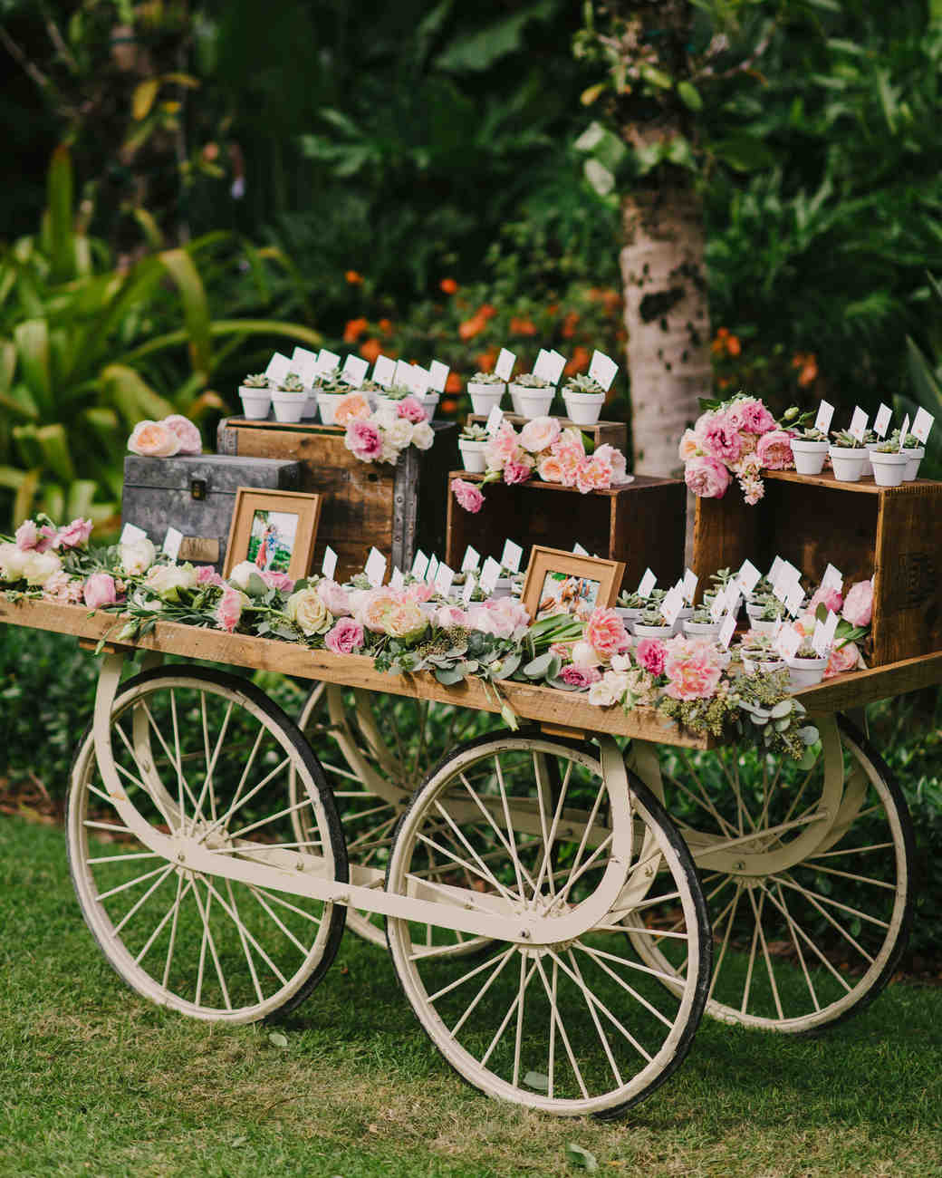 favor display cart