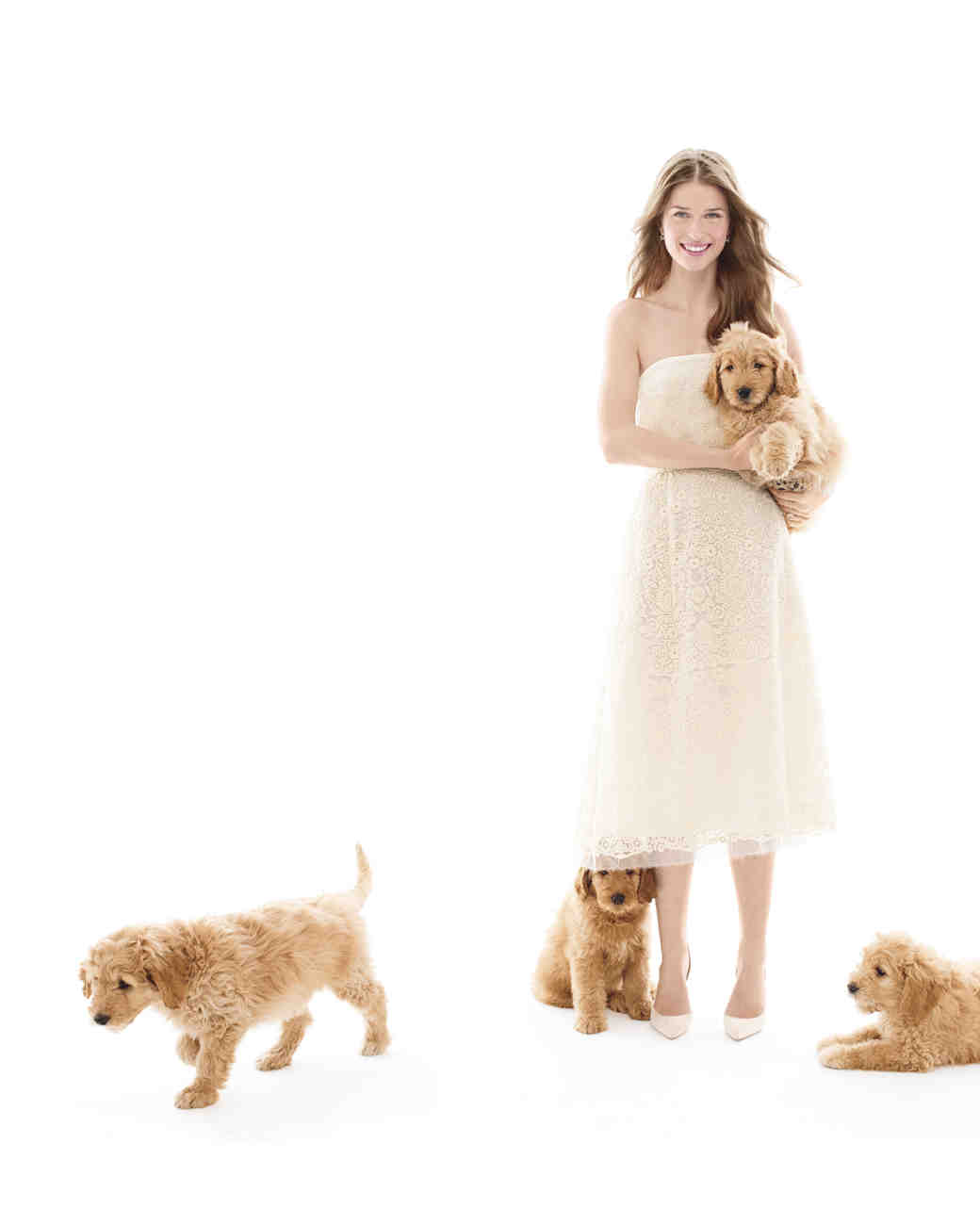 puppies-wedding-dress-124-d111904-comp.jpg