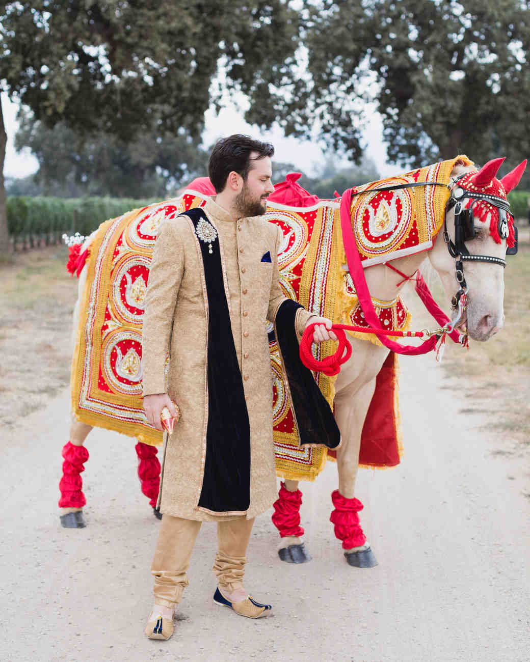 groom portrait in indian sherwani with horse