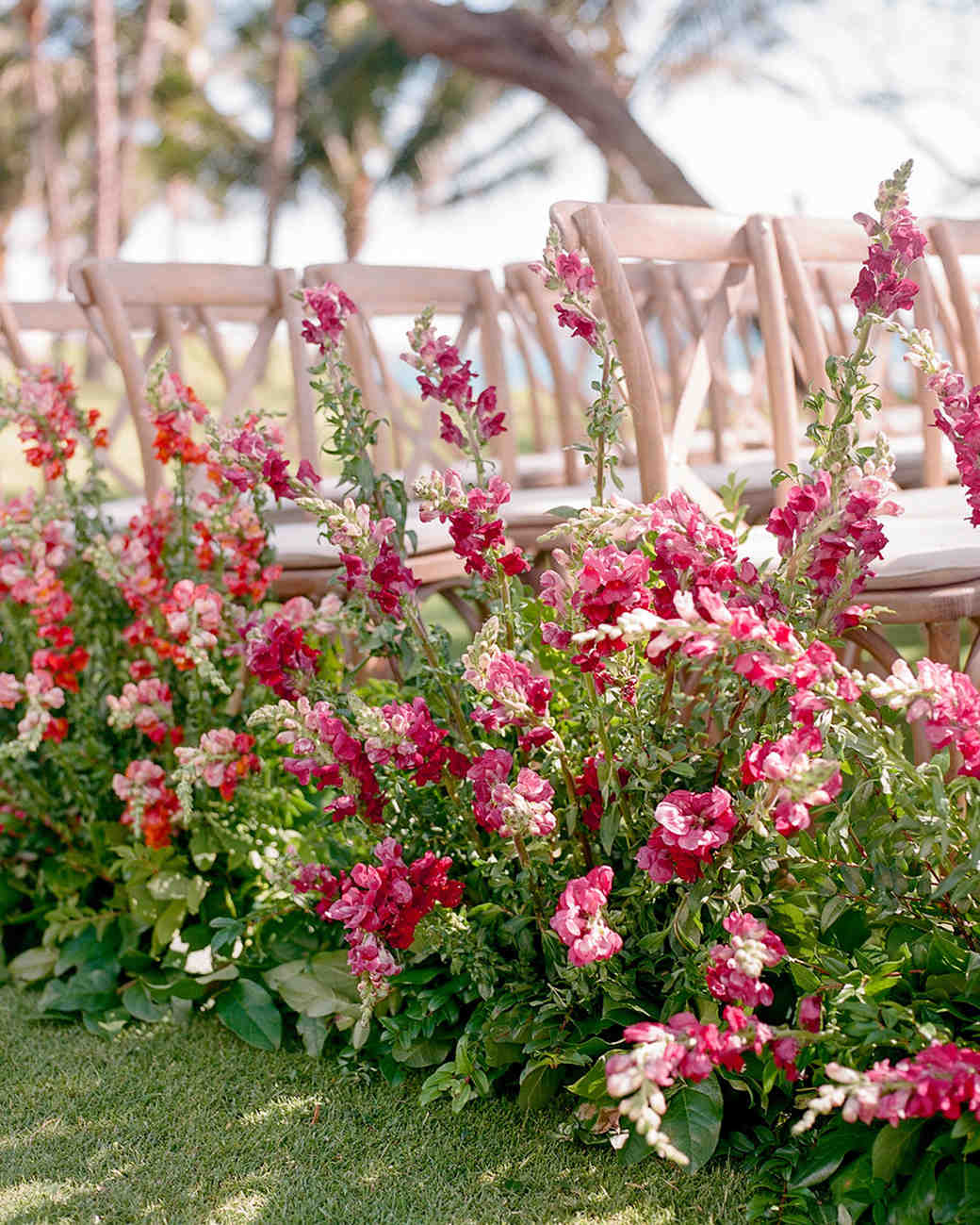 snapdragon floral arrangements lining wedding aisle next to wooden chairs