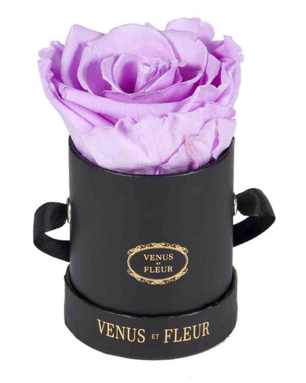 """Venus et Fleur """"Le Mini Round"""" Rose"""
