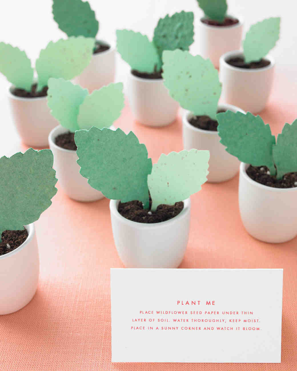 diy-floral-favors-seeds-in-soil-sp10-0615.jpg