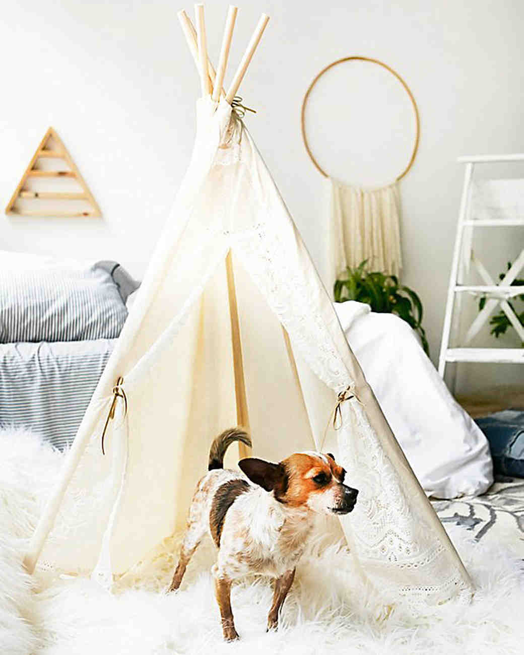 41 Adorable Gifts for Your Pets | Martha Stewart Weddings