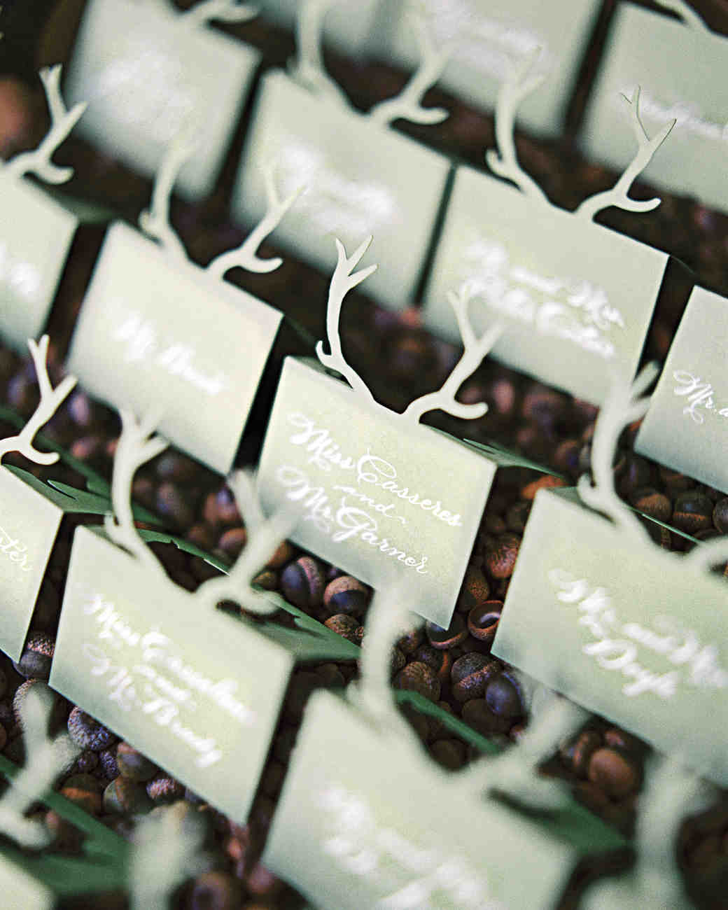 place-cards-008856-r1-005-copy-mwds110846.jpg