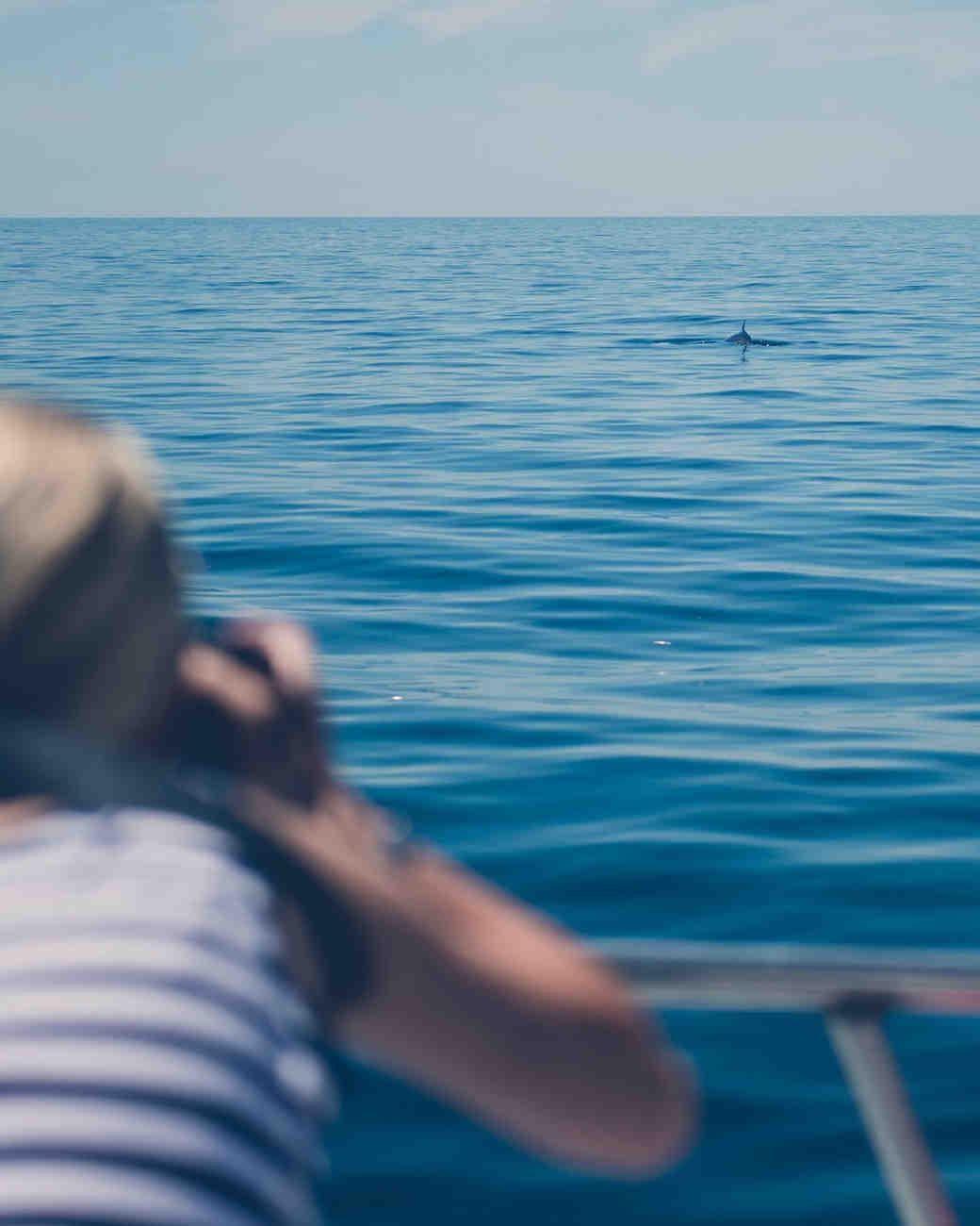 vanessa-lauren-whale-watch-10-s112087-0415.jpg