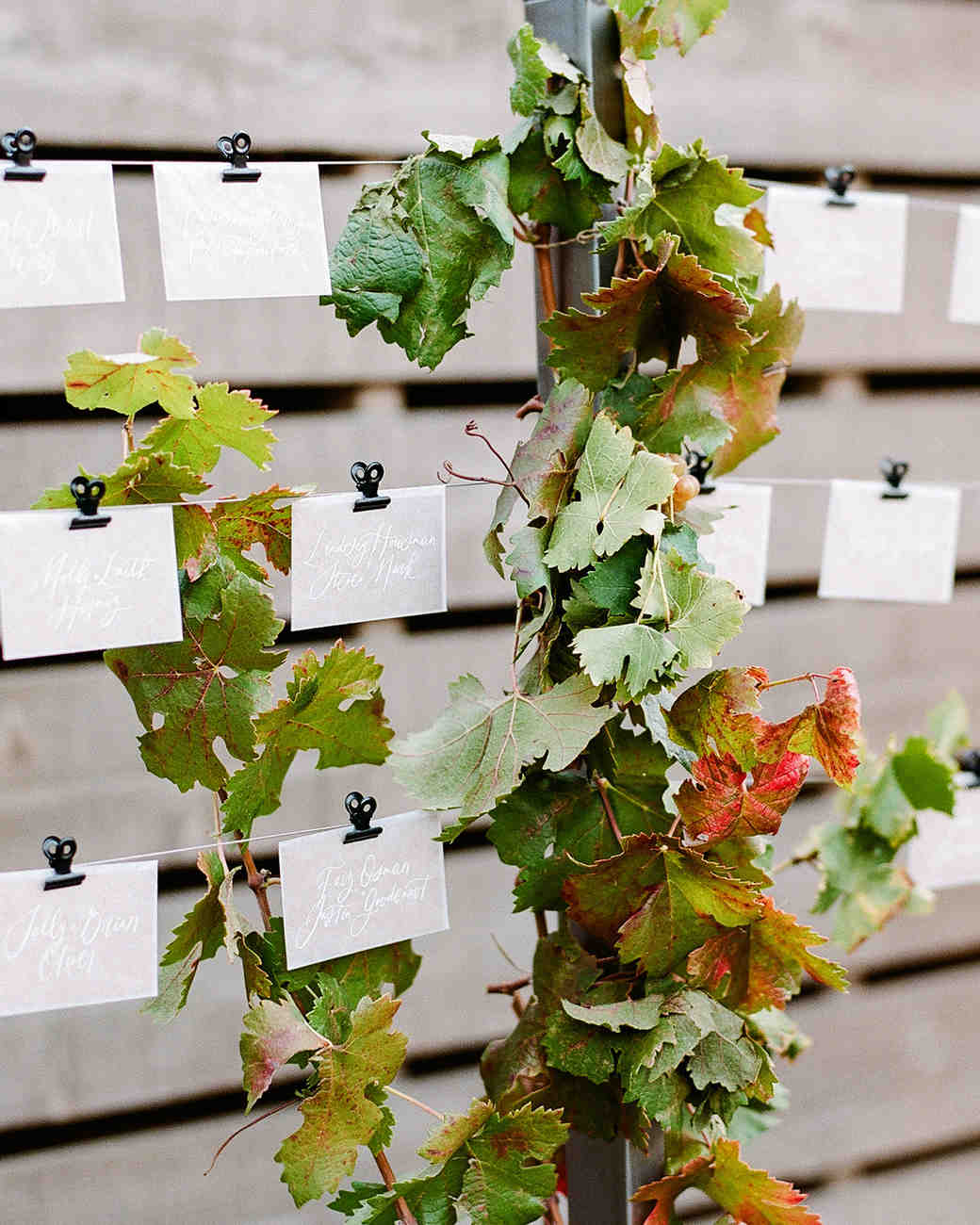 cristina chris wedding escort cards on lines with fall leaves