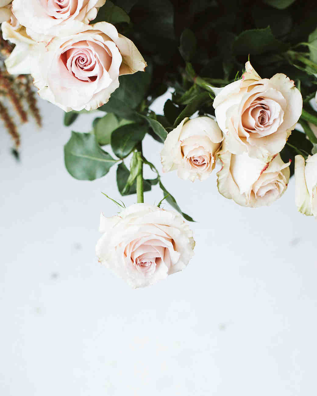 The 5 Most Romantic Wedding Flowers Martha Stewart Weddings