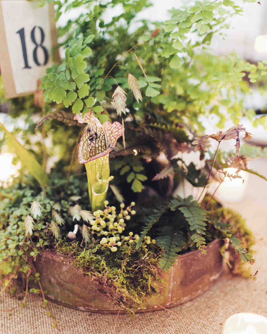 Woodland-Inspired Centerpieces