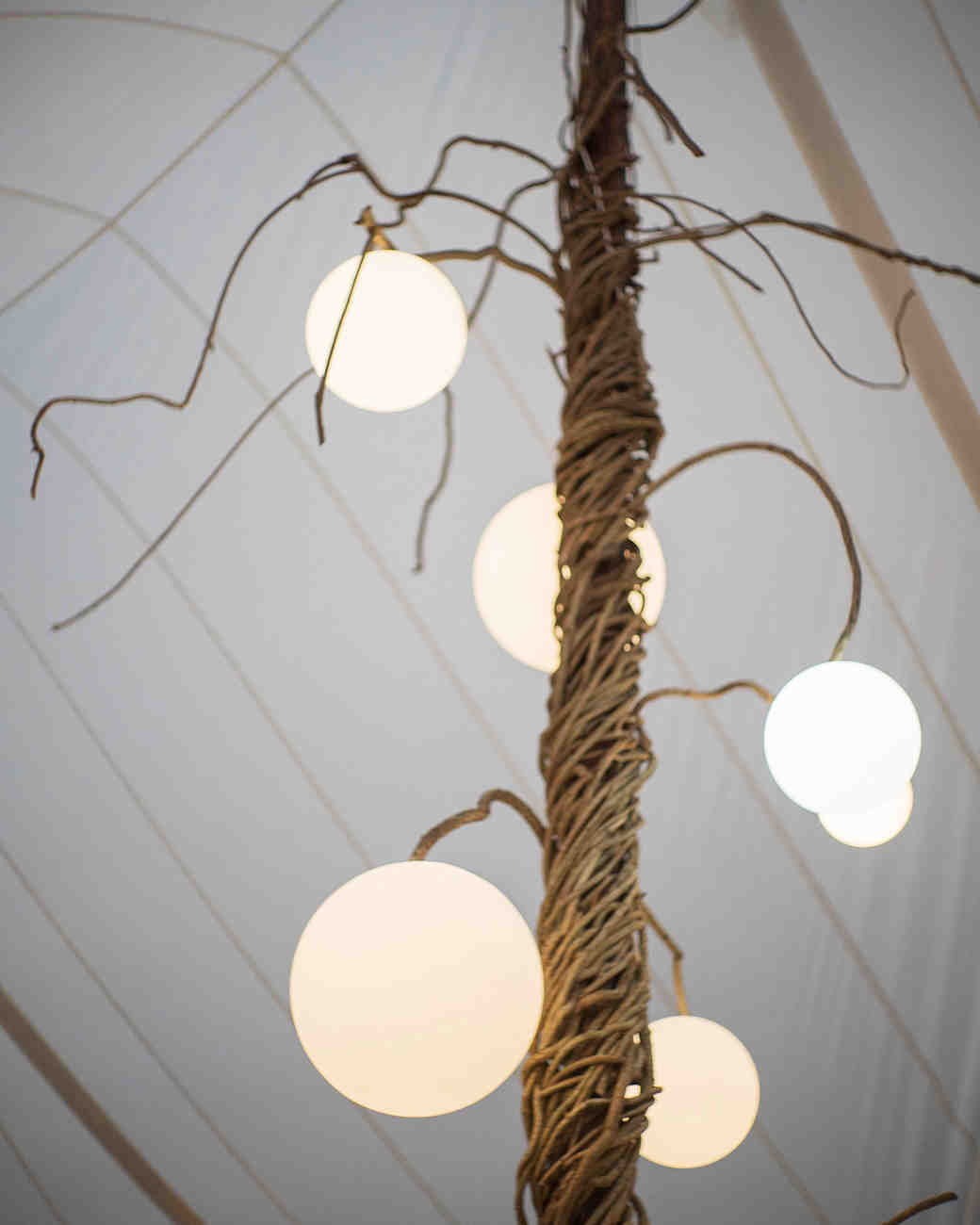 wedding tent vines and lights