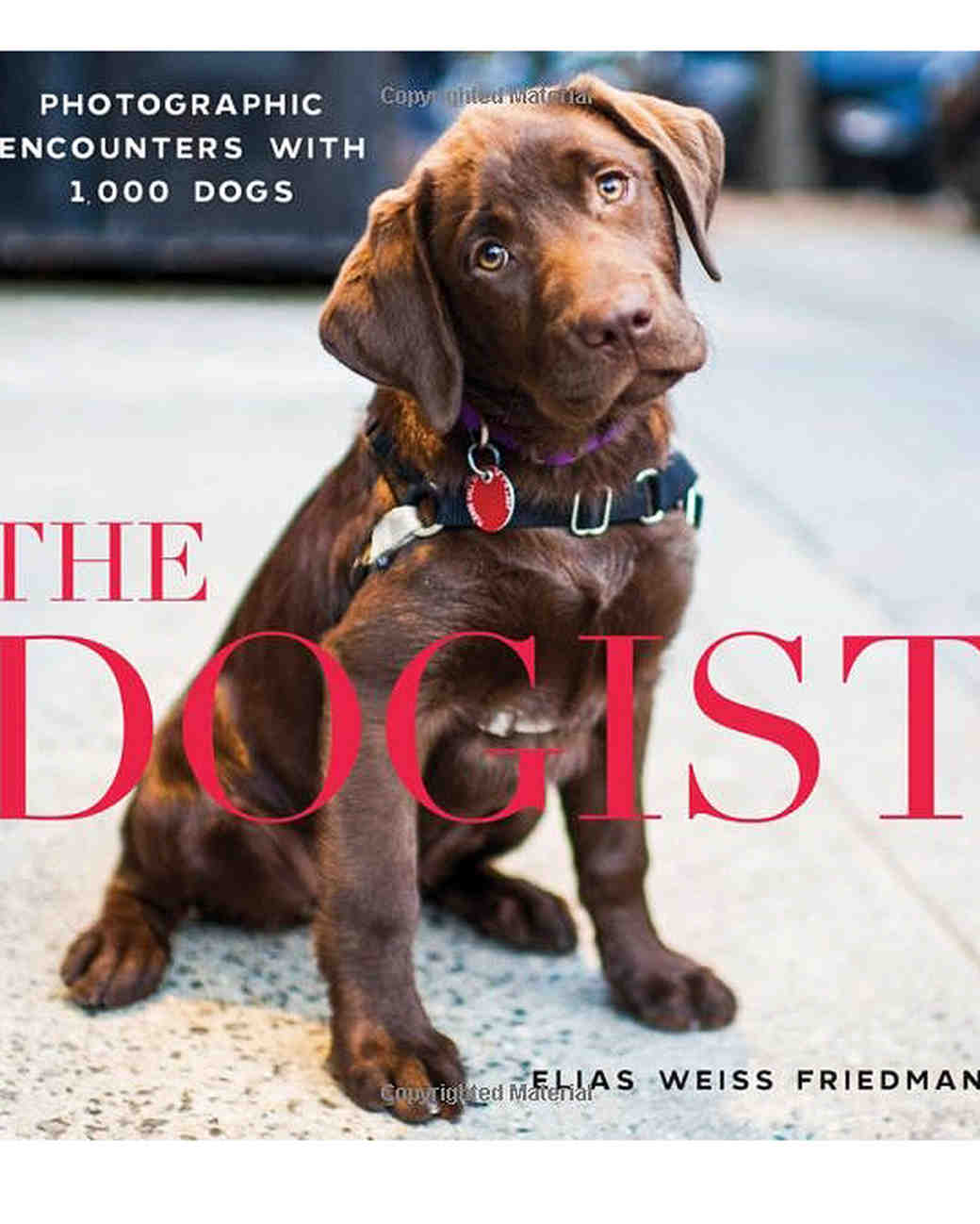 engagement-gifts-dogist-coffee-table-book-0316.jpg
