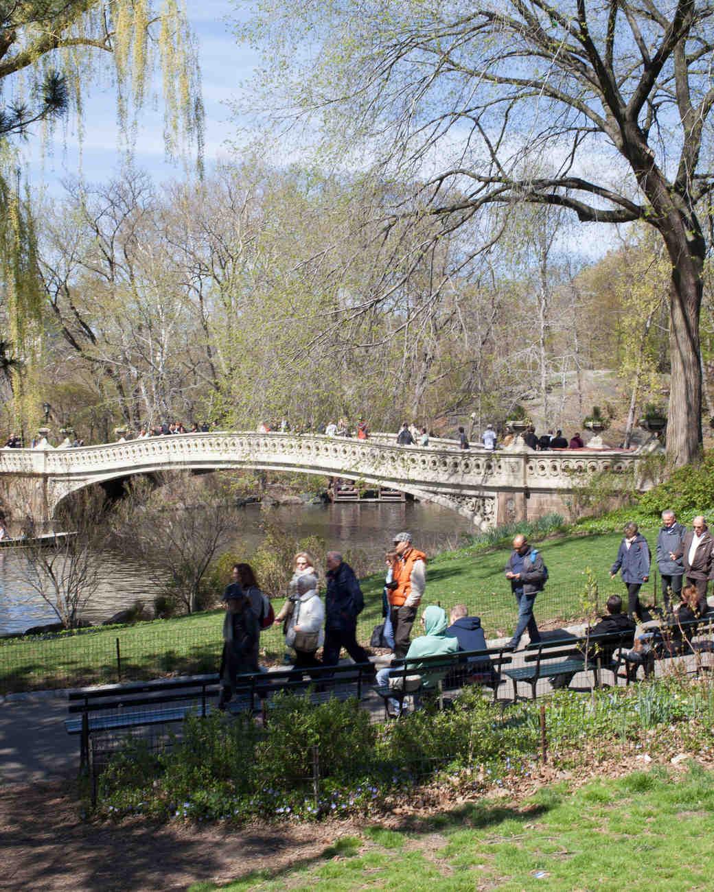 nyc-proposal-spot-central-park-bow-bridge-1114.jpg