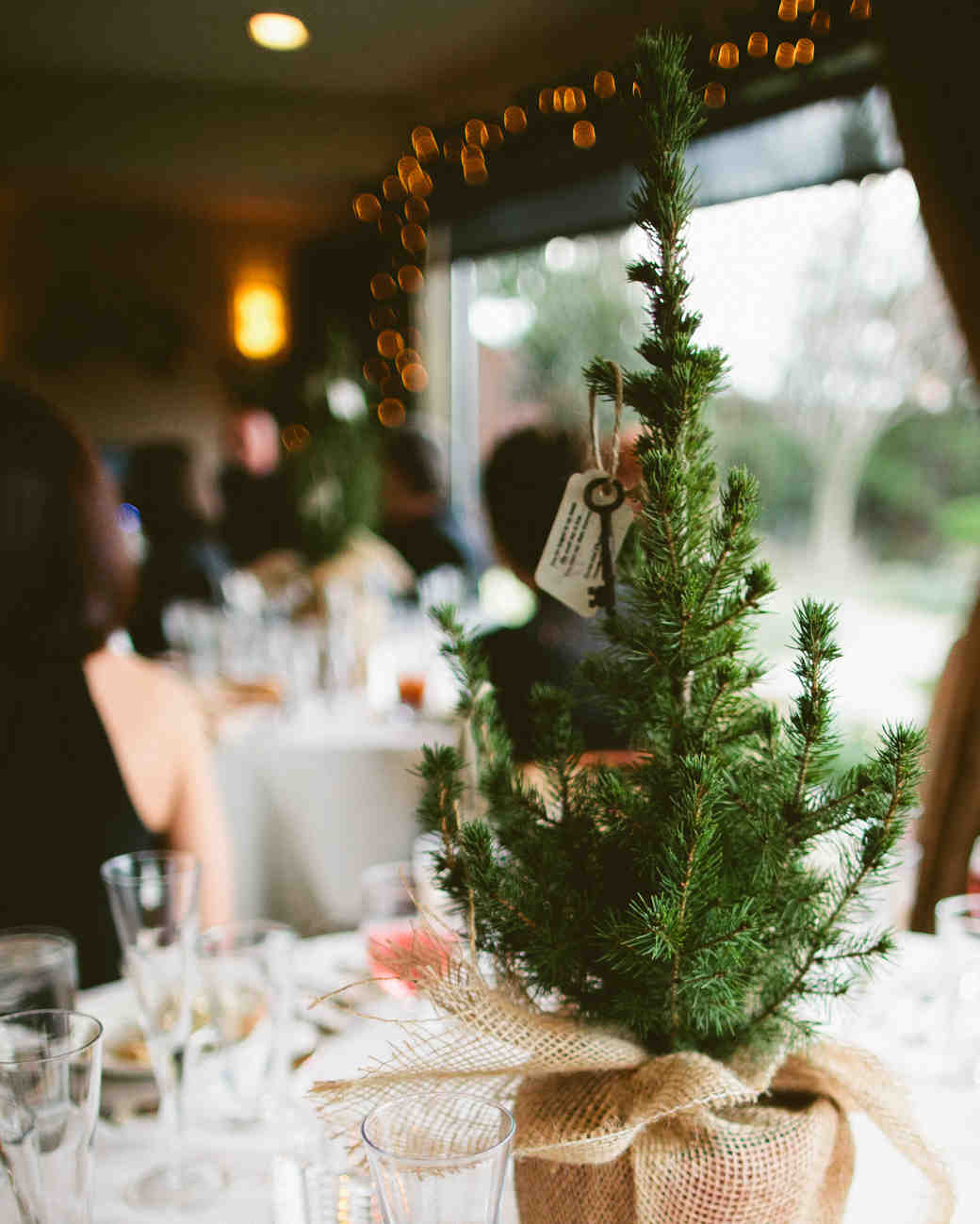 evergreen tree centerpiece
