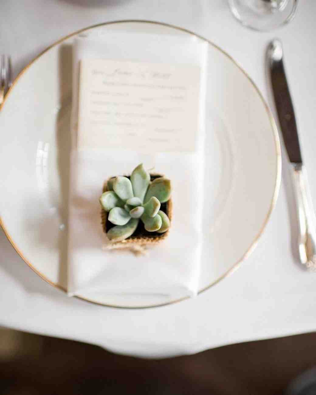 Superb Succulent Table Décor