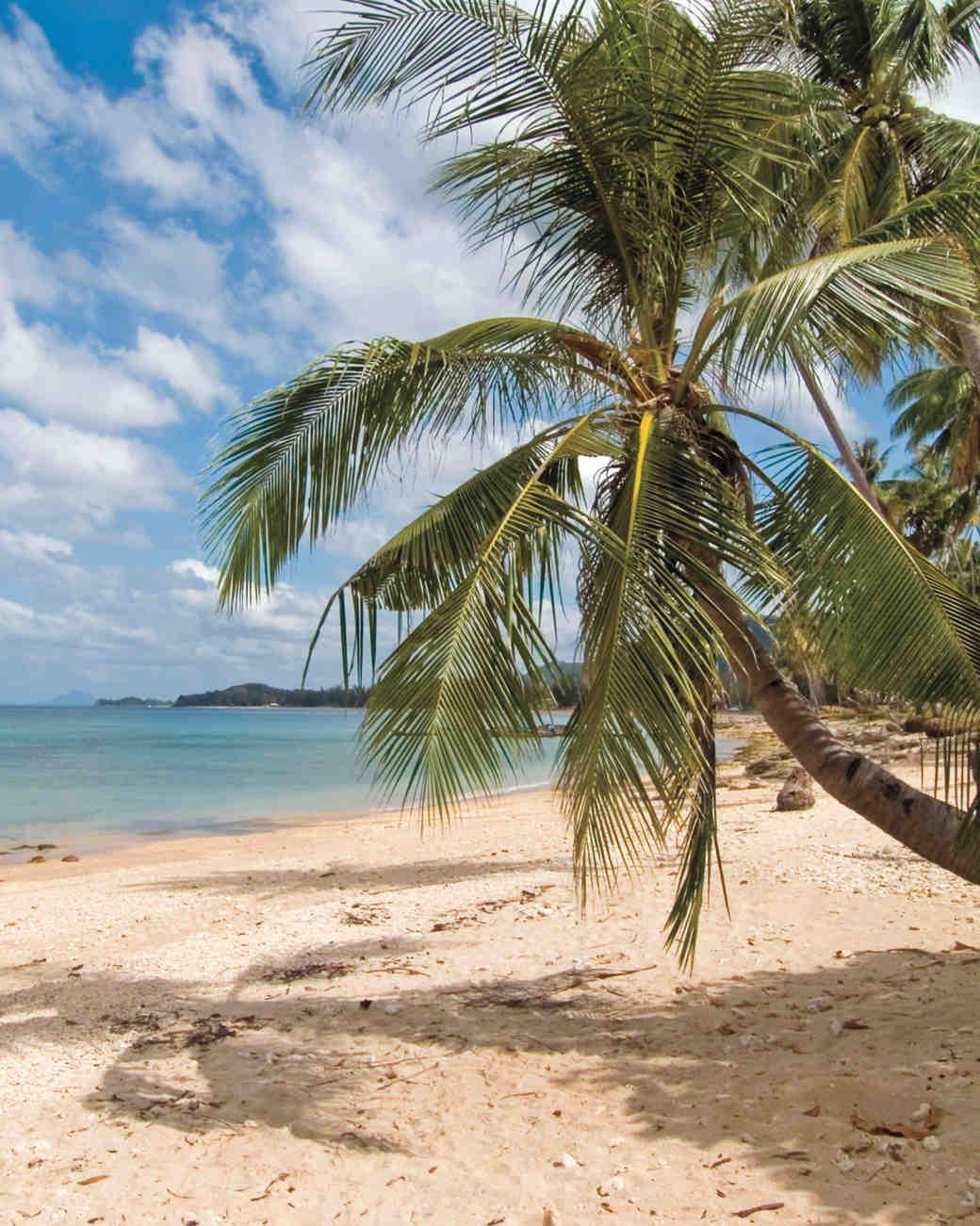 deserted-beach-istock-000003038565-large-s112566.jpg