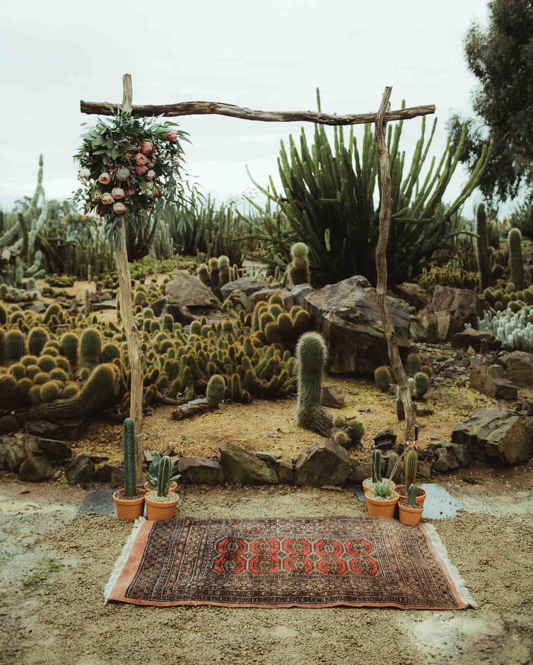 Cactus Ceremony Backdrop