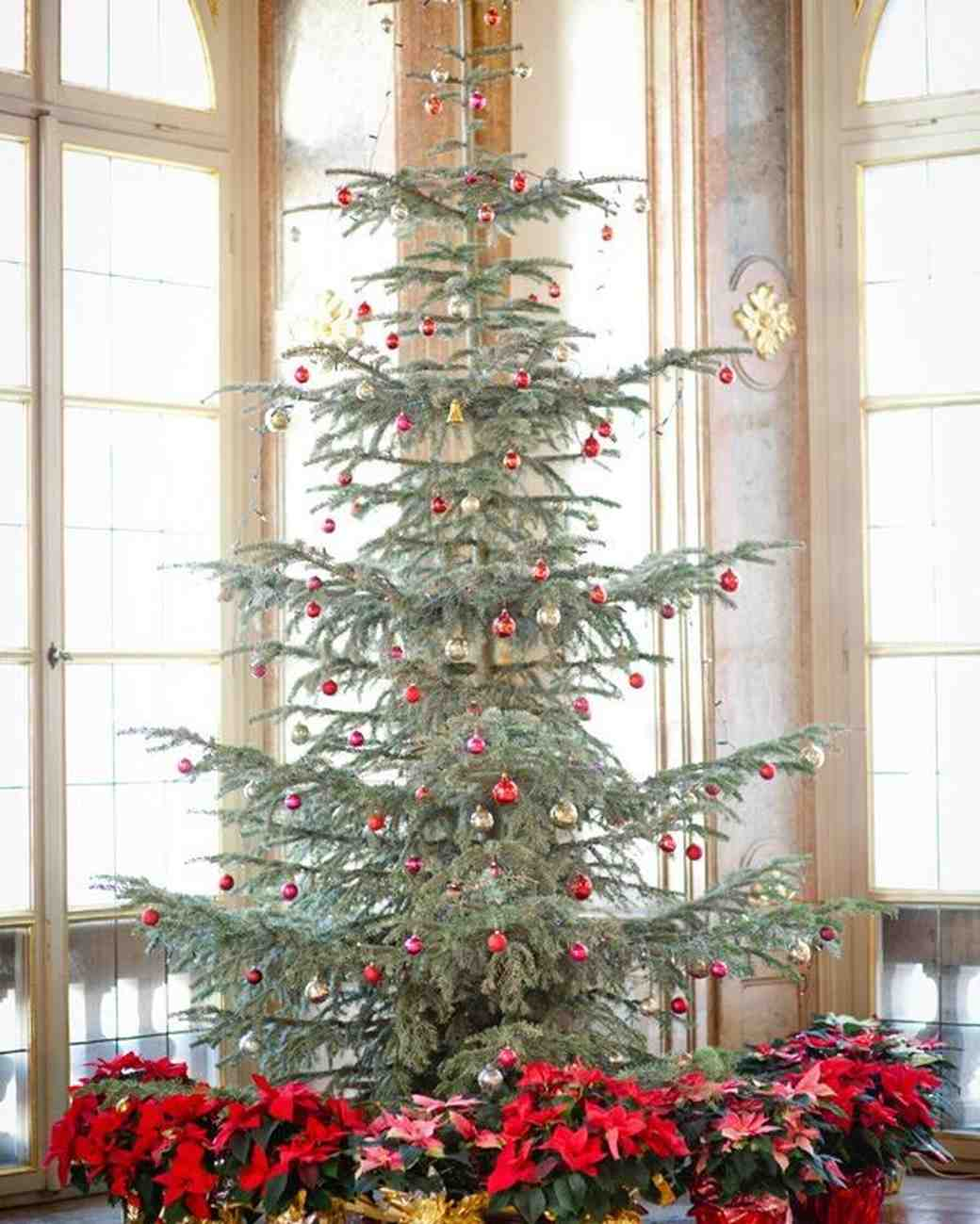 25 Festive Christmas Tree-Inspired Wedding Ideas | Martha Stewart ...