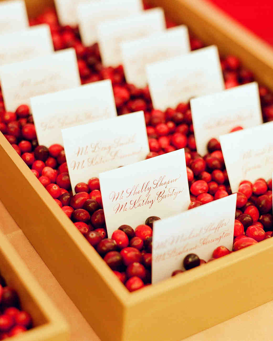 Cranberry Seating Display