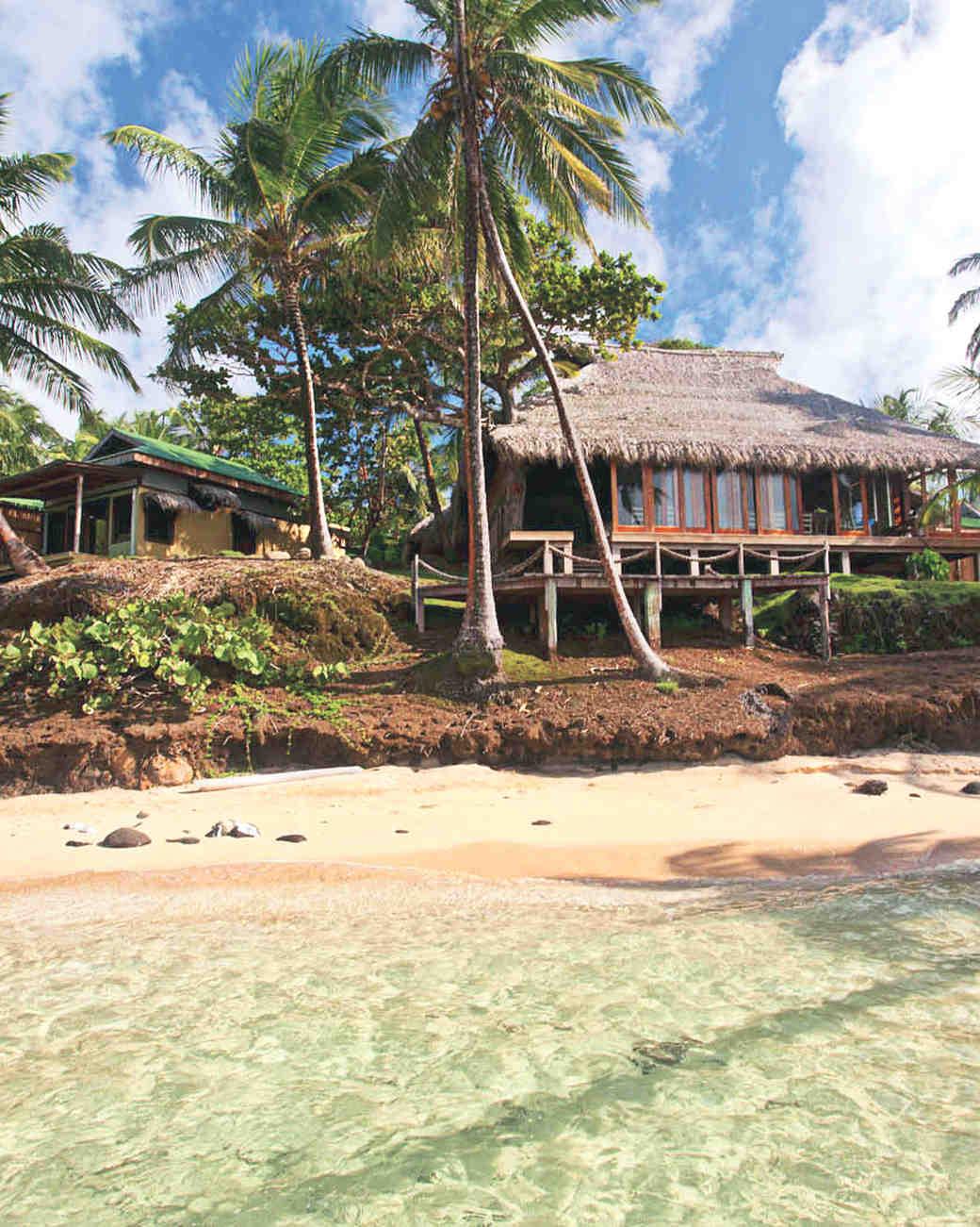 palm-tree-tropical-lodge-yemaya-img-1203-mwds111006.jpg