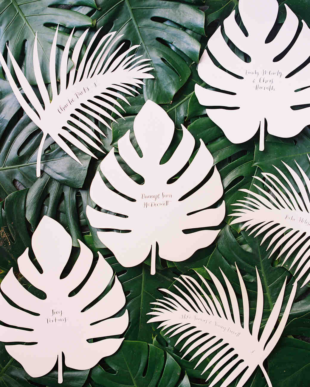 sara danny mexico wedding escort cards leaf