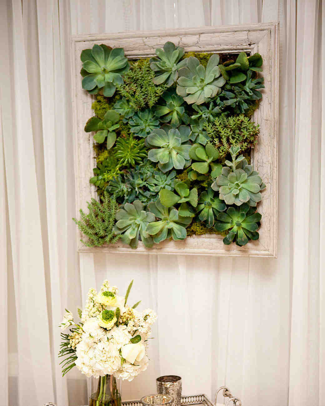 succulent wall decoration