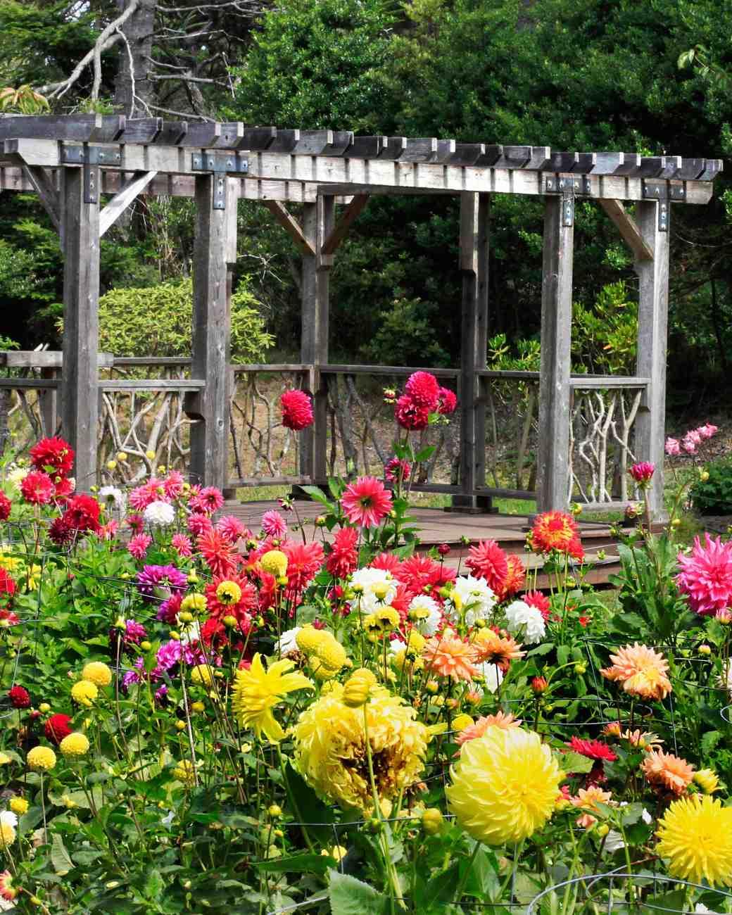 Beautiful Garden Wedding Ideas: 25 Beautiful Garden Wedding Venues
