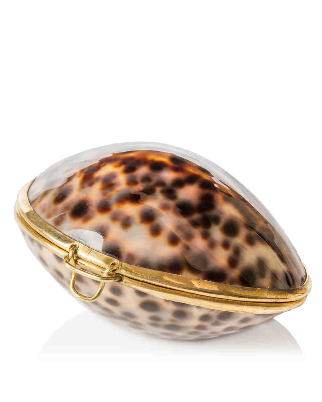 ring-boxes-the-evolution-store-tiger-cowrie-purse-0115.jpg